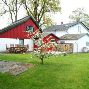 Prerow Ferienhaus Lee Garten